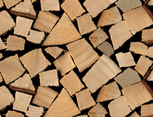Brennholz Optik 800