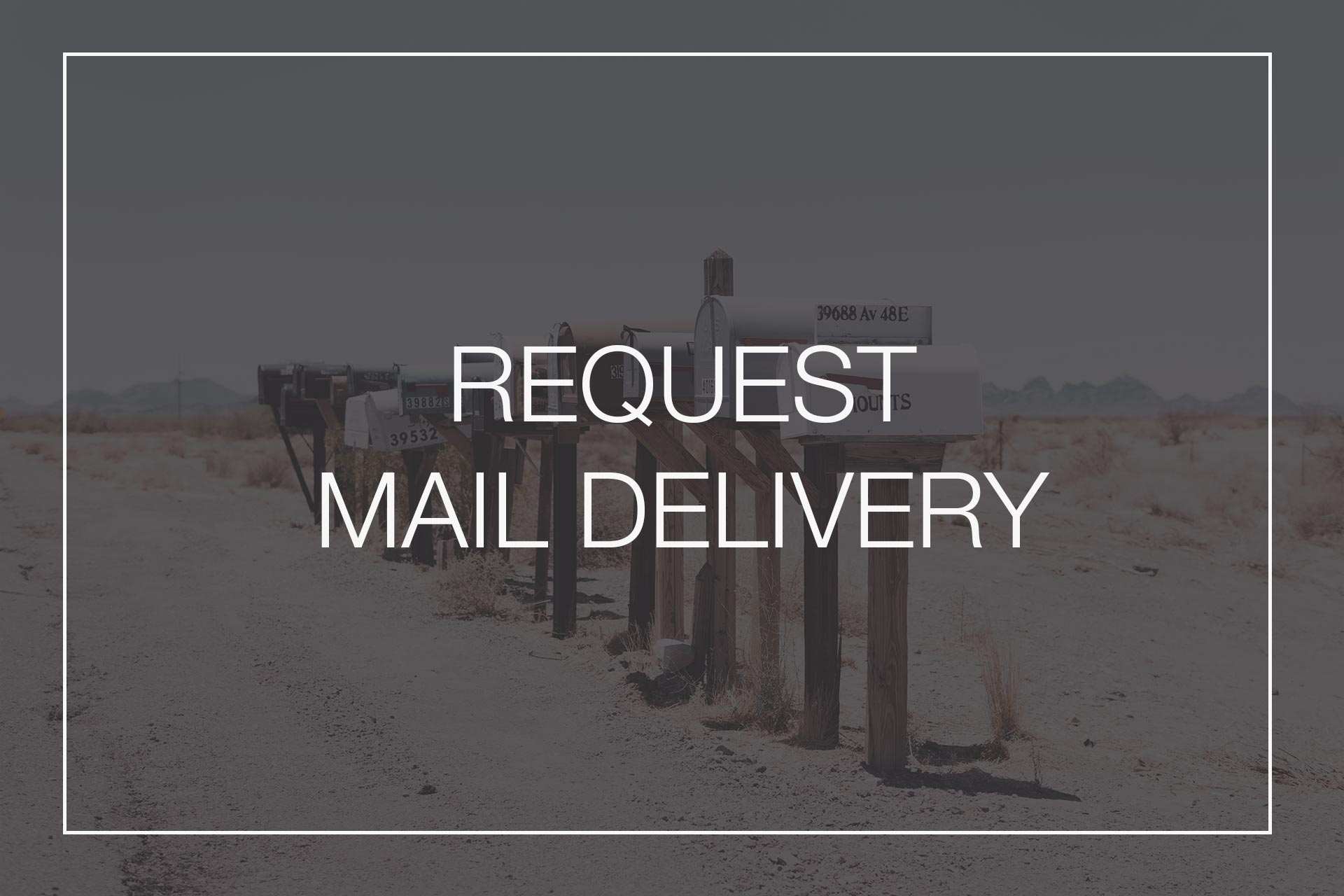 Catalogue Mail Delivery
