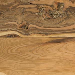 Marille Holzdekor Ausschnitt