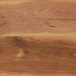 Zwetschge Holzdekor Ausschnitt
