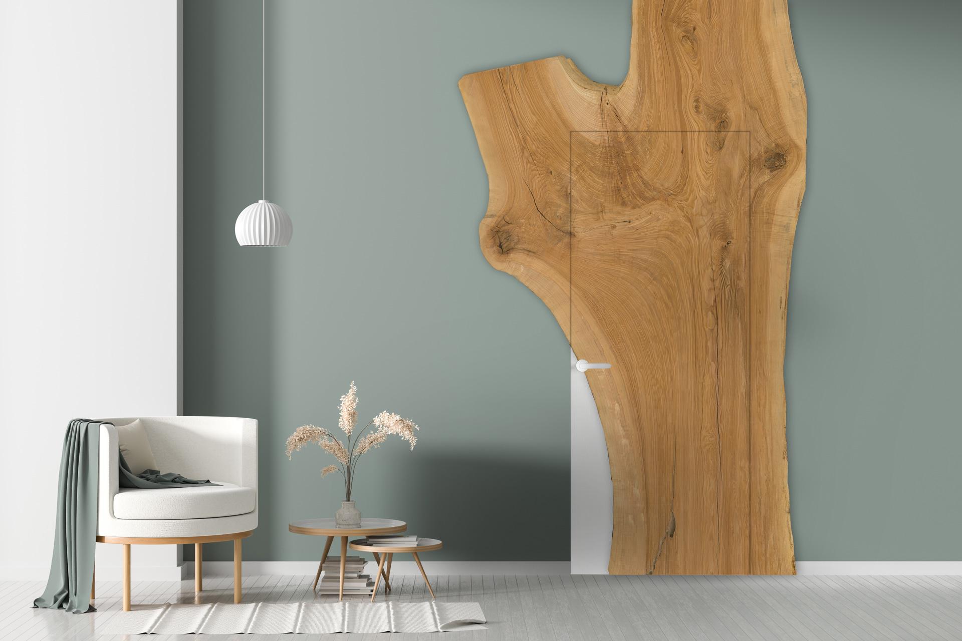 Tür mit Edelholzplatte